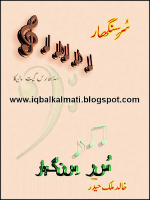 Sur Singar Music Urdu Book by Malik Haider in PDF