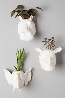 Idee Per Giardini Verticali Da Interno