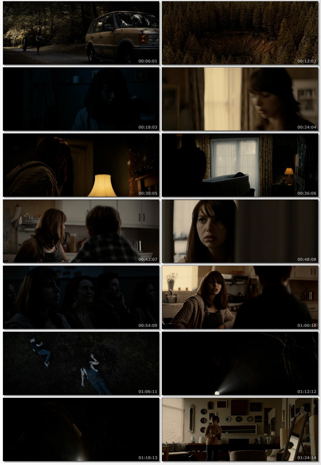 The Hole in the Ground 2019 Hindi ORG Dual Audio 720p