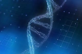 El disco duro de ADN va más allá de una teoría