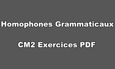 Homophones Grammaticaux CM2 Exercices PDF