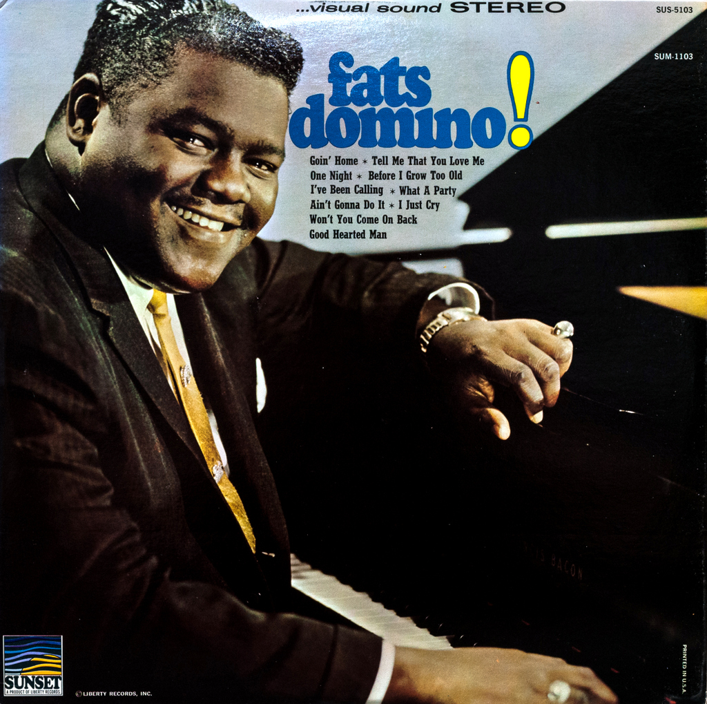Vinyl Philosophy Vinyl Feature Fats Domino Fats