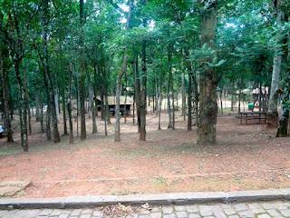 Parque Estadual do Jaraguá - Área de Piquenique