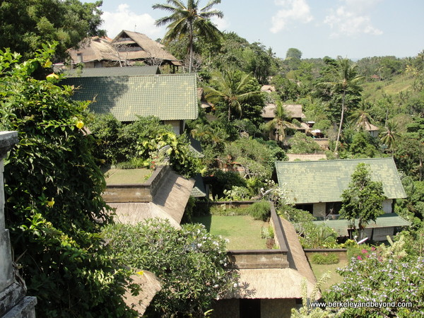 view from porch at Indus restaurant in Ubud, Bali, Indonesia
