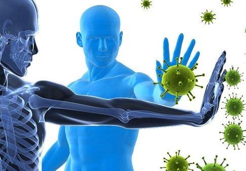 Daftar Buah Peningkat Daya Tahan, Kekebalan, Dan Sistem Imun Dalam Tubuh