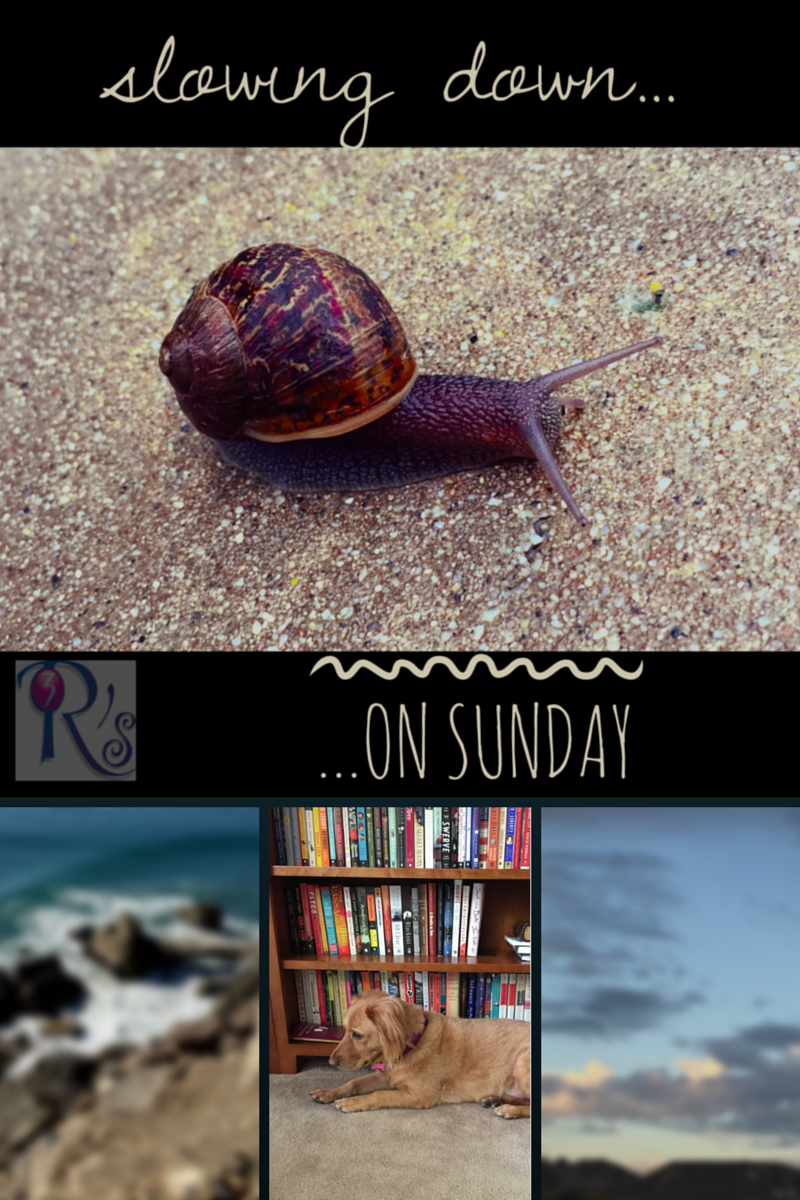 On The 3 Rs Blog: Slowing Down on Sunday