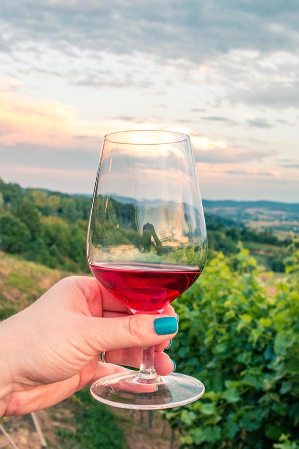 Magiczne polskie winnice - Winnica Janowice