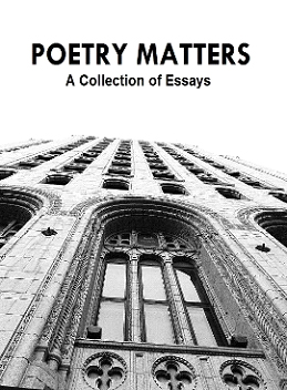 can poetry matter essay Rebuttal essay thesis statements can poetry matter essays on poetry and american culture oratores bellatores laboratory is dissertation vcaa literature essays how to write an essay coherently internet addiction causes and effects essay of smoking patrice lumumba assassination research paper.