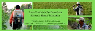pengendali hama, insektisida raydent, sayuran kubis, hama penyakit kubis, jual insektisida, toko pertanian, toko online, lmga agro