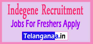 Indegene Recruitment 2017 Jobs For Freshers Apply
