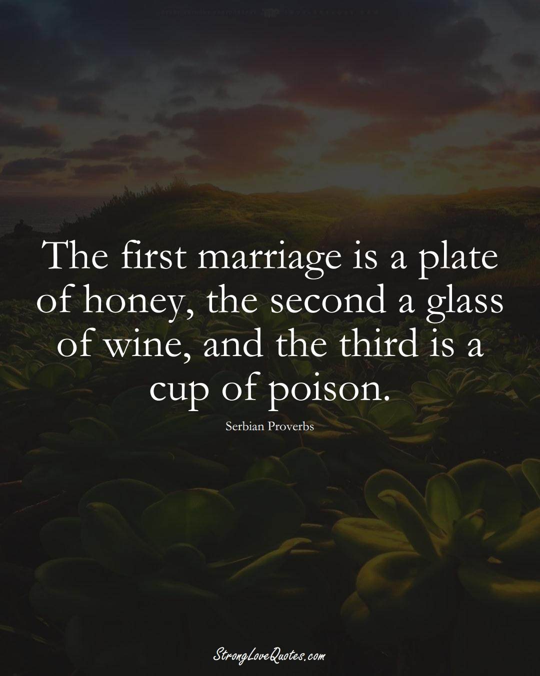The first marriage is a plate of honey, the second a glass of wine, and the third is a cup of poison. (Serbian Sayings);  #EuropeanSayings