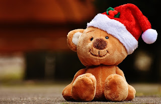teddy day image 12