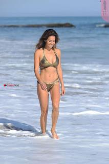 Brooke-Burke-In-Bikini-in-Malibu-01+%7E+SexyCelebs.in+Exclusive.jpg
