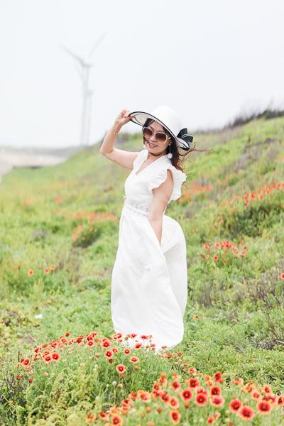 苗栗後龍海角樂園海邊賞天人菊、大風車、彩虹造景,美照好好拍