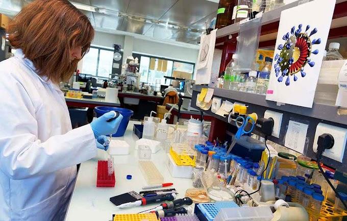کورونا وائرس لیبارٹری میں تیار کیا گیا؟ تحقیق سے کیا معلوم ہوا۔۔۔ جانیے