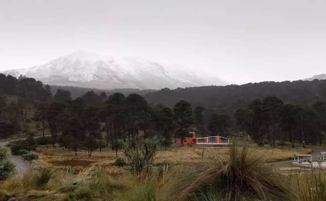 Nieve, paisaje, bosque