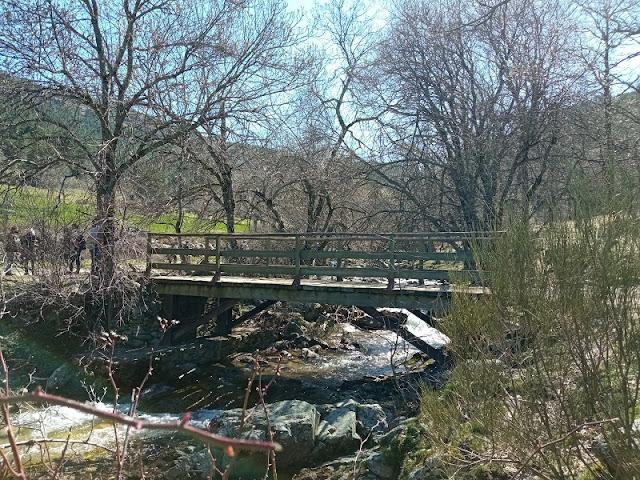 Puente de madera donde acaba la pista y se une al sendero