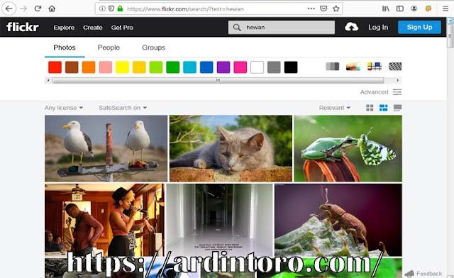 Mencari Gambar di Internet