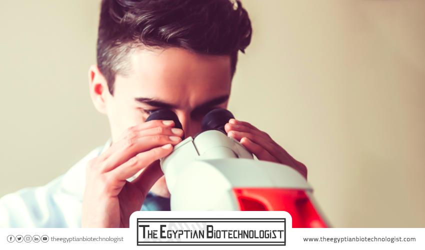 ما هو مستقبل «التكنولوجيا الحيوية - Biotechnology» في مصر؟