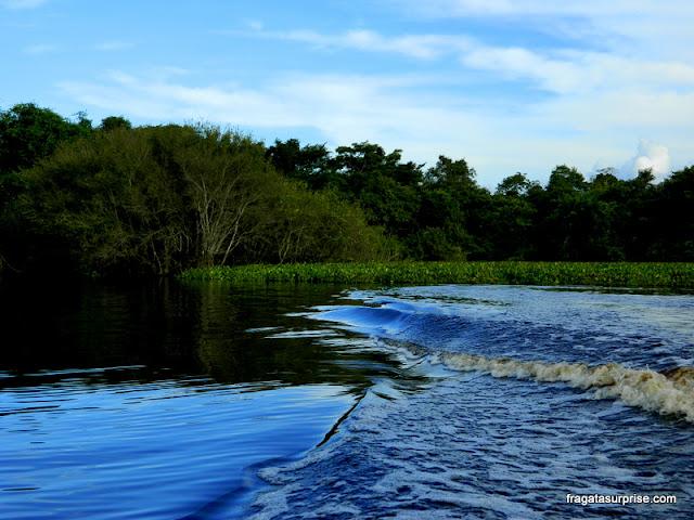Pantanal do Mato Grosso