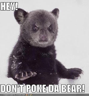 Image is a cute bear who looks very grumpy. Text says: Hey! Don't Poke Da Bear!