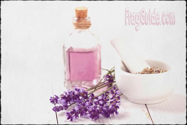 جودة عالية بأسعار زهيدة | كيف يصنع لك تركيب العطور عطرا مثاليا؟!