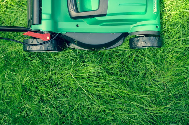 Best Self Propelled Lawn Mower for Rough Terrain