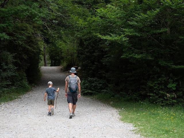 Padre e hijo de espaldas caminando por un bosque
