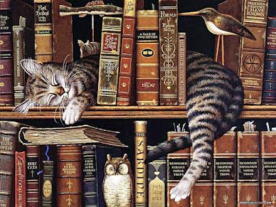 Gato atigrado durmiendo y rodeado de libros