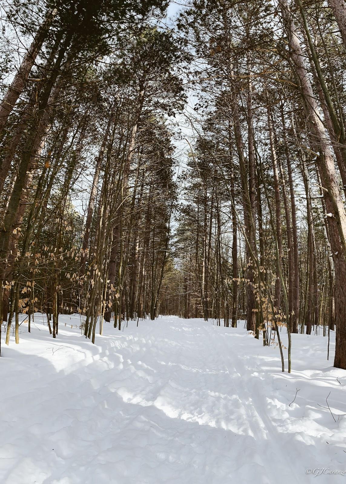 Winter in Ottawa, Ontario, Canada