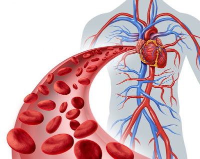 Reduction of the blood clot