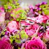 60 Kata Kata Mutiara Untuk Pasangan Suami Istri Islami