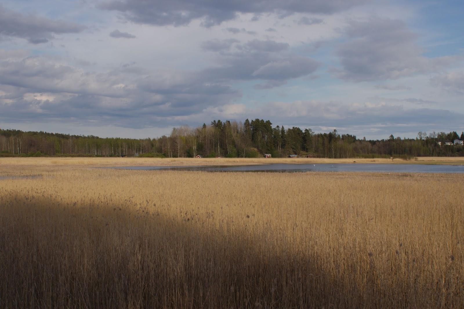 Fiskarsinmäki, Espoonlahden luonnonsuojelualue