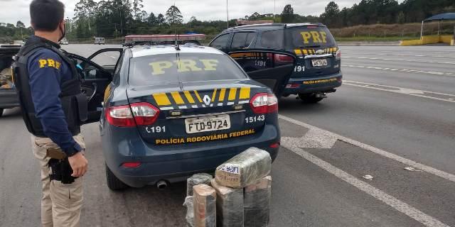 PRF prende idoso de 66 anos transportando 30 quilos de maconha na Régis Bittencourt