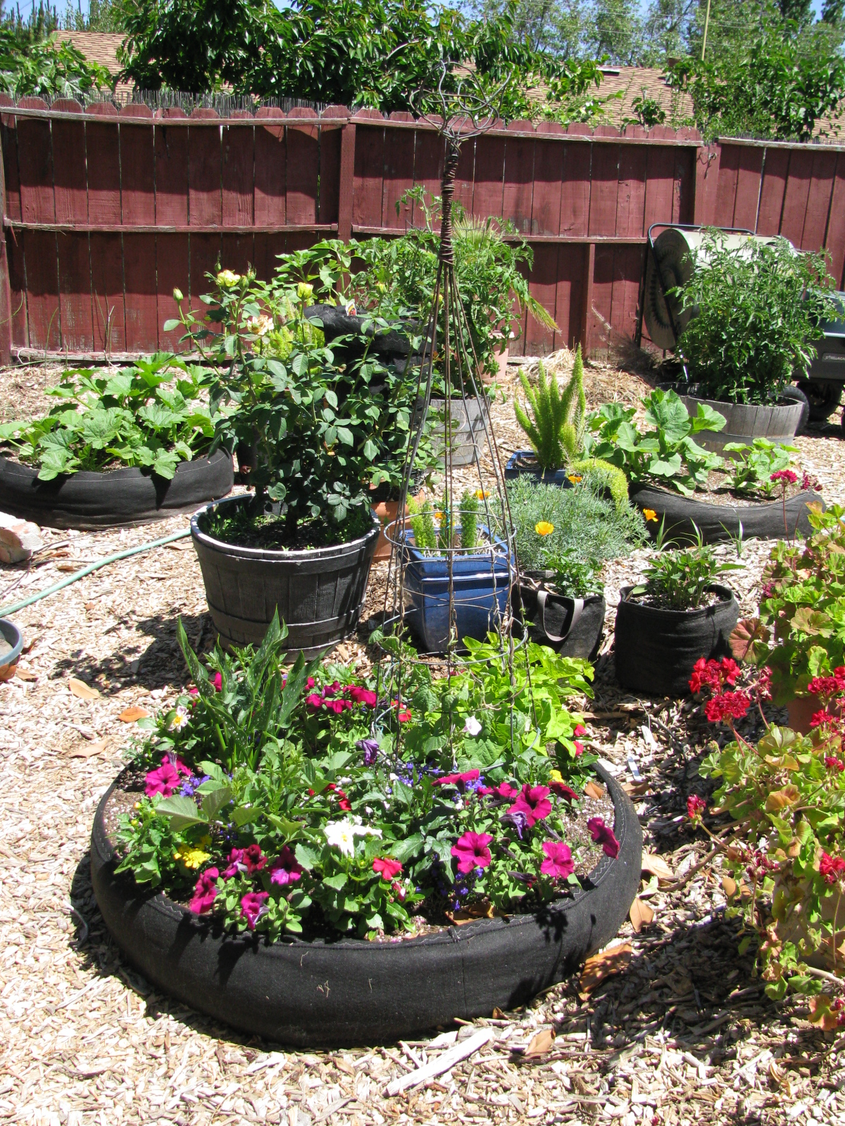 Landscape Redo Garden With Raised Beds And Fabric Pots