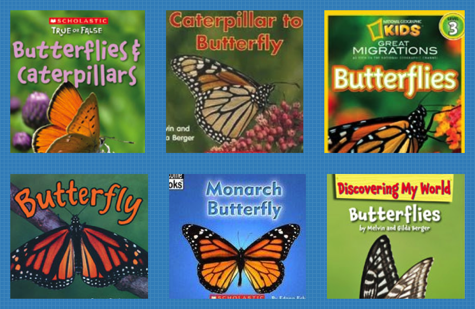 butterfly books for kindergarten