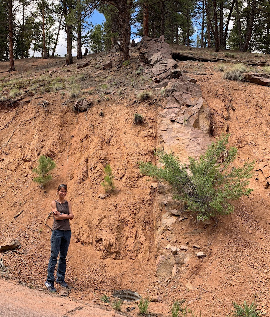 Geologists work to piece together Earth's missing memories
