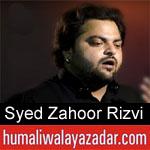 https://humaliwalaazadar.blogspot.com/2019/08/syed-zahoor-rizvi-nohay-2020.html