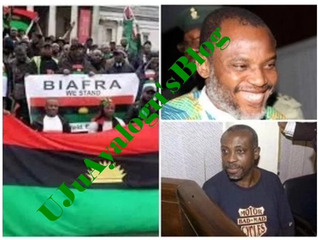 Trouble between Biafra agitators as MASSOB insists nothing will stop Anambra election