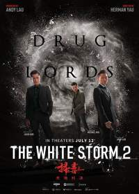 The White Storm 2 Drug Lords 2019 Hindi Dubbed Movies Download 480p