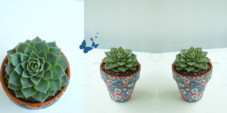 Vrolijke bloempotten met stof diy decoratie mod podge for Decoratie steentjes