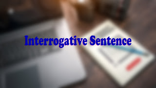 Interrogative Sentences Exercises