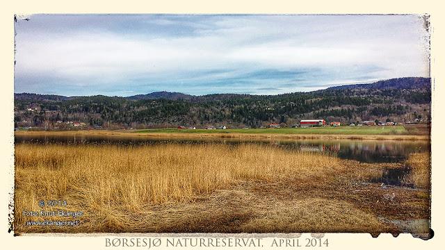 Børsesjø naturreservat en dag i April. Børsesjø er en innsjø som ligger i Gjerpensdalen i Skien kommune i Telemark.