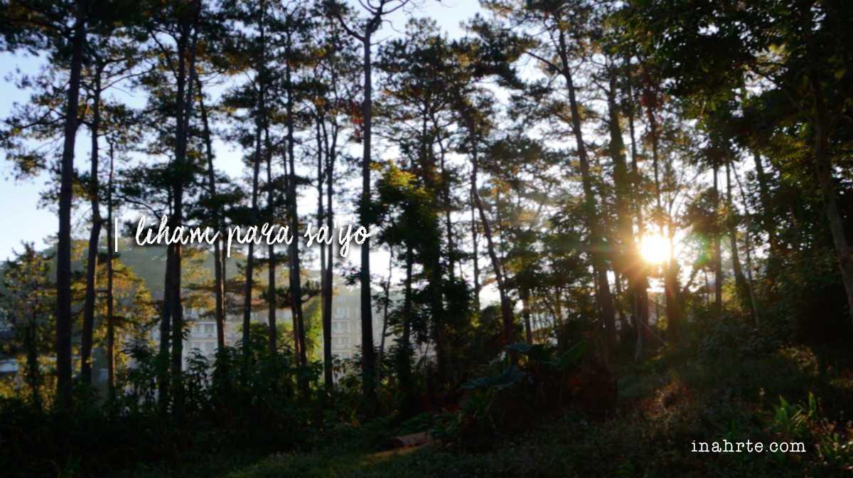 INAHRTE | Baguio Sunrise Trees