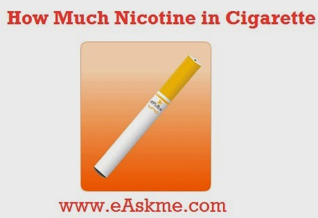 How Much Nicotine in Cigarettes : wikihealthblog