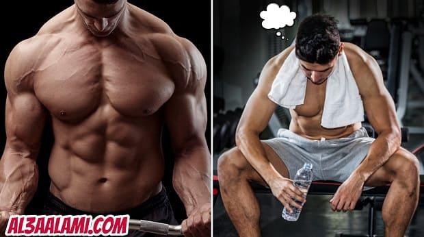 بناء العضلات . بناء العضلات للمبتدئين . بناء العضلات للنحاف .