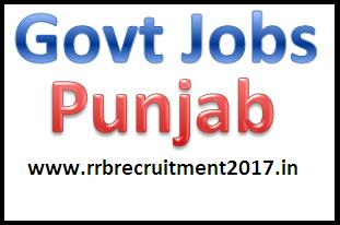 Govt Job in Punjab 2016-17