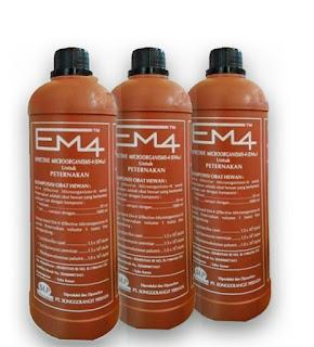 Manfaat EM4 Peternakan Untuk Ayam Aduan
