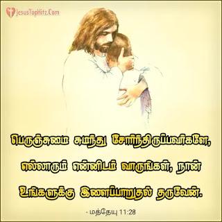 Today bible verse in tamil matthew 11:28