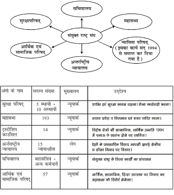 12 class political science notes in hindi